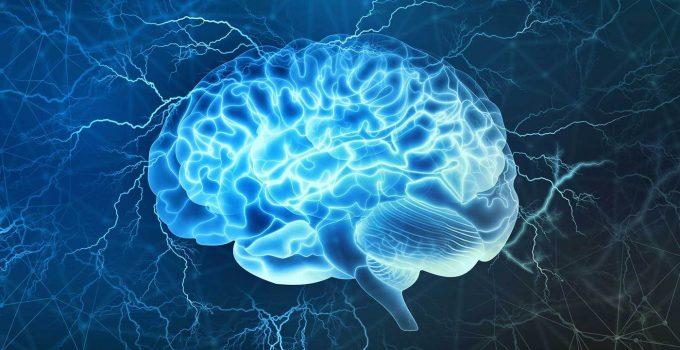 a healthy brain